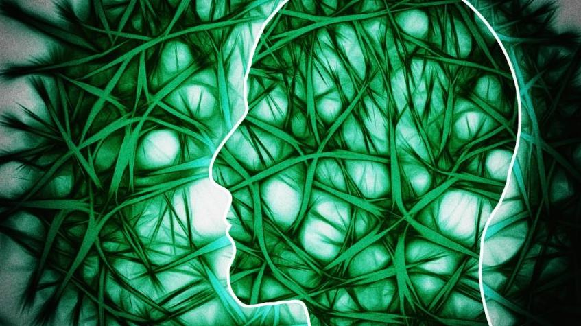 Dowody na to, że brak witaminy D może zwiększać ryzyko rozwoju stwardnienia rozsianego