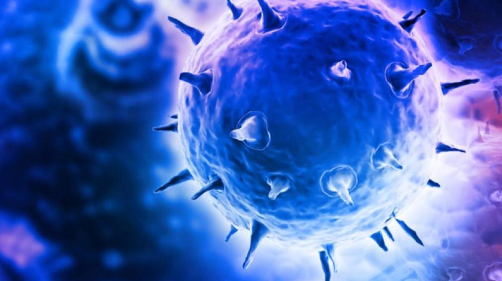 Nasze ciało pokazuje nam, jak walczyć z rakiem: część 2