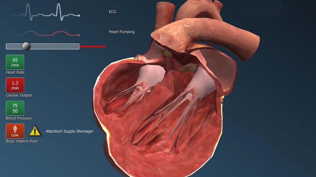 Mikroskładniki odżywcze zapobiegają niewydolności serca