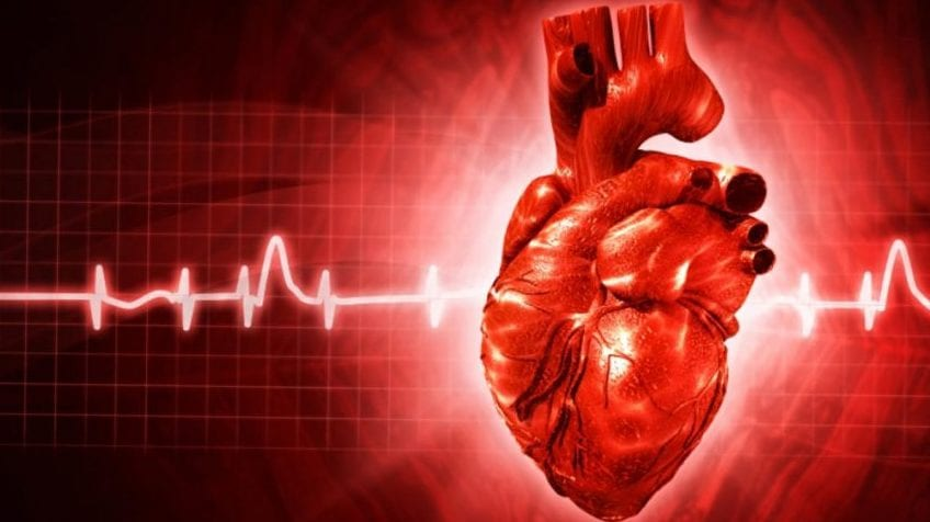 Znaczenie witamin i minerałów dla optymalnej funkcji serca