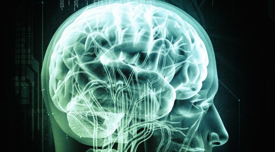 Witaminy z grupy B i kwasy omega-3 mogą powstrzymać rozwój choroby Alzheimera