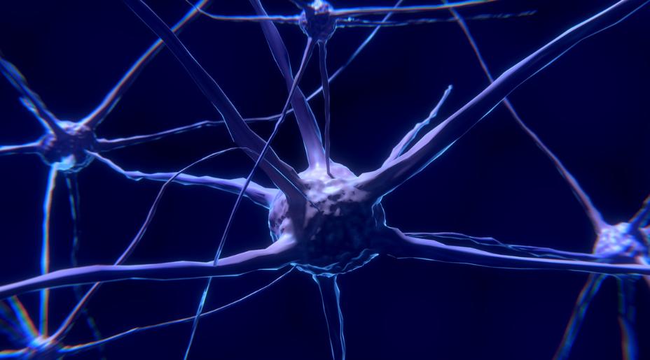 Witaminy przynoszą korzyści w leczeniu choroby Parkinsona