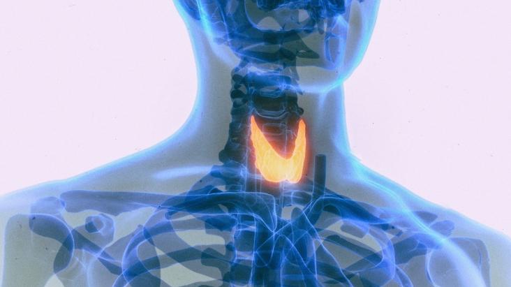 Suplementy witaminy D łagodzą częste zaburzenia tarczycy